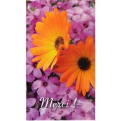 Mod 3010 : 6 cards